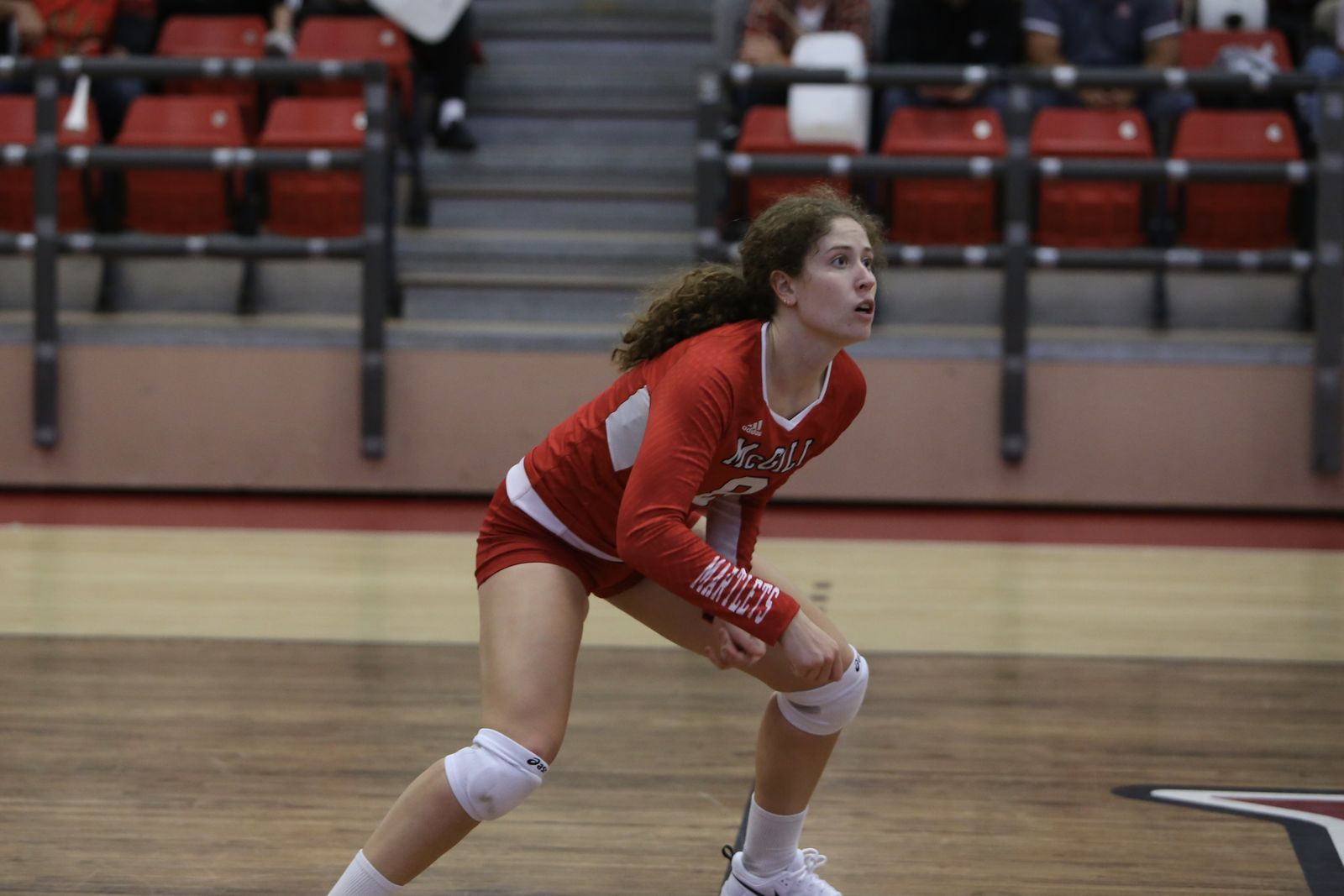 VBALL_w_Fletcher_Rowan_action2_McGill_2019-20.JPG (125 KB)