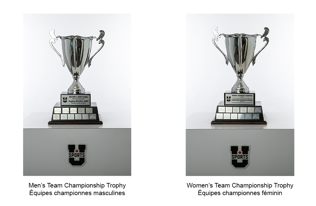 Swimming_Team_Championship_Trophies.png (412 KB)